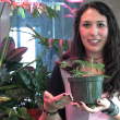 TWIS Short #1 – Plant Memory